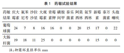 1例麻黄鸡大肠杆菌与葡萄球菌混合感染的诊治