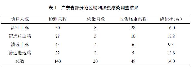 广东部分地区鸡瑞利绦虫感染调查与鉴定