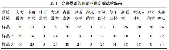 1例麻黄土鸡支原体与葡萄球菌混合感染的诊治