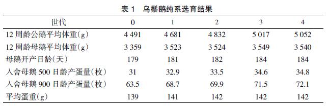 广东鹅优质高产系选育及配套应用