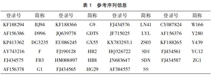 江西地区 H9亚型禽流感 病毒 WS-JX 株的分离鉴定
