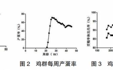 1例三黄鸡J亚群禽白血病的诊断报告
