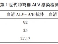 河南省某地方品种鸡场禽白血病净化效果探讨