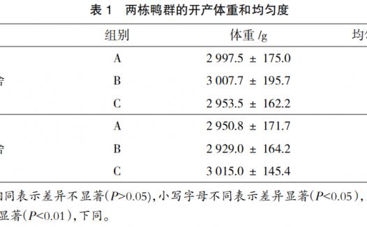 番鸭产蛋期不同光照强度对产蛋性能的影响