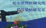 听课笔记 | 仇华吉:规模化猪场复养技术要点